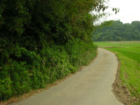 山ギワ.jpg